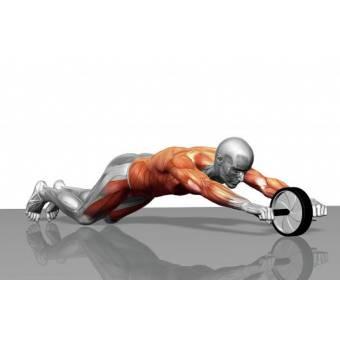 Rueda para Abdominales Fitness en casa